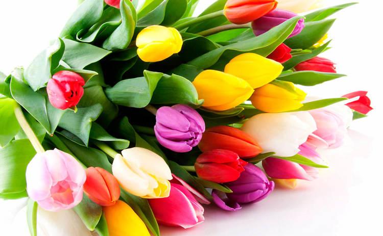 Поздравляем дорогих дам с 8 марта!
